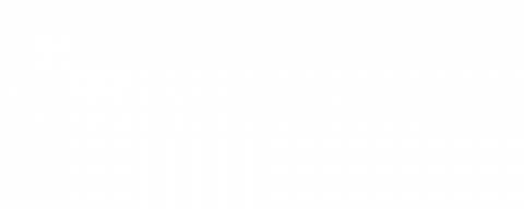 Western Union white logo