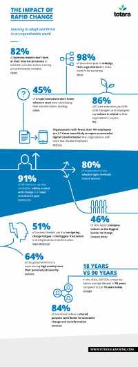 Infographic showing the challenges facing organizations dealing with rapid change