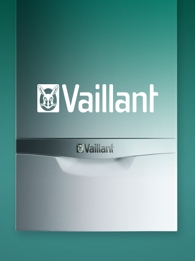 Vaillant_Totara_LMS_small